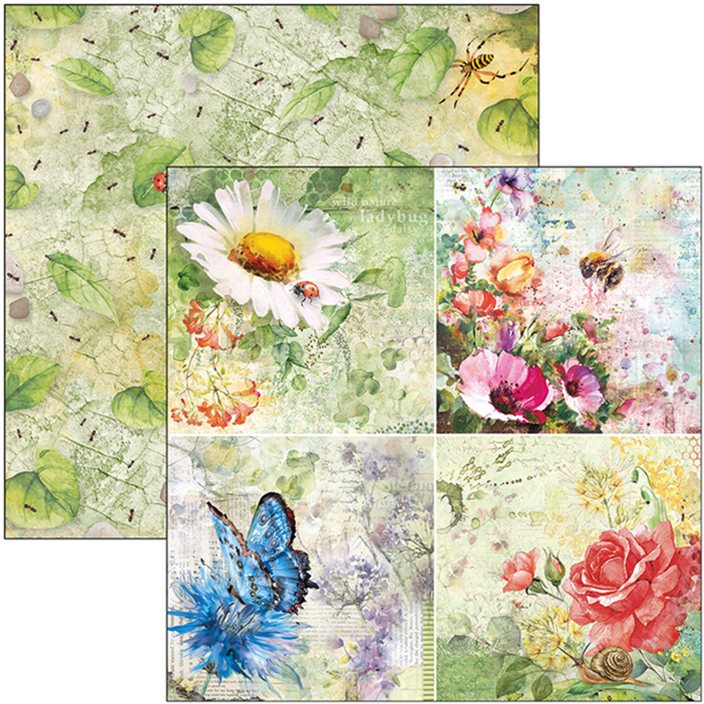 """Ciao Bella - Double-Sided Paper Pack 6""""X6"""" 24/Pkg Microcosmos (CBQ037)"""