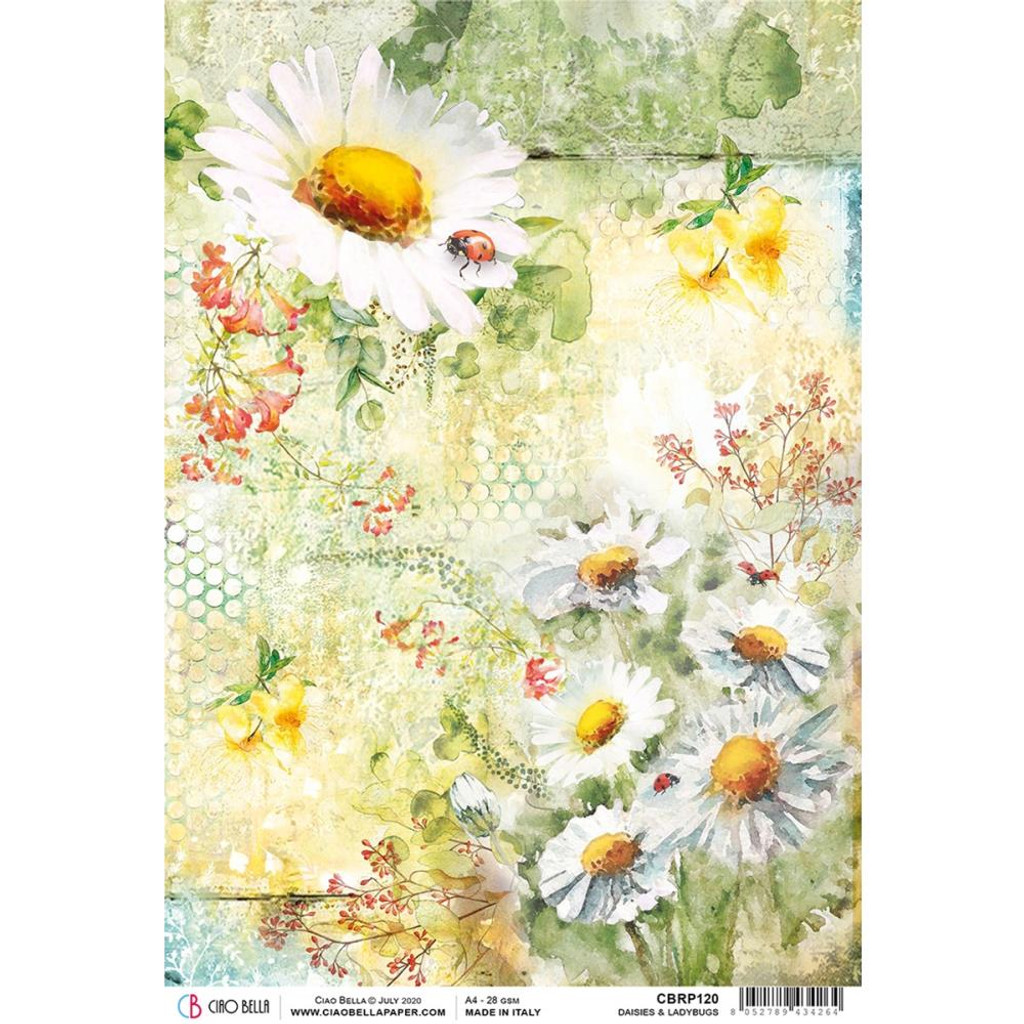 Ciao Bella - Decoupage Rice Paper A4 - Microcosmos - Dasies and Ladybugs (CBRP120)