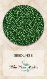 Seedlings - Fir Tree 835988