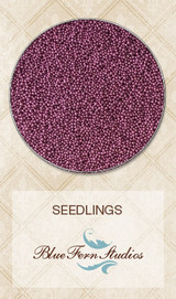 Blue Fern Studios - Seedlings - Red Grape 847080