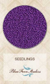 Blue Fern Studios - Seedlings - Wisteria 852688