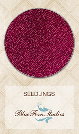 Blue Fern Studios - Seedlings - Maroon (847288)