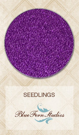 Blue Fern Studios - Seedlings - Purple Crayon