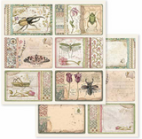 Stamperia - Double-Sided Cardstock 12x12 - Spring Botanic - Cards (SBB590)