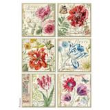 Stamperia - Decoupage Rice Paper A4 -Spring Botanic - Botanical Cards (DFSA4383)