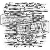 The Crafters Workshop - 6x6 Template Stencil - Mini Tiny Circles (TCW 361s)