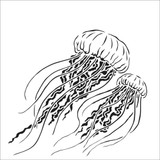 The Crafters Workshop - 6x6 Template Stencil - Jellyfish (TCW 917s)