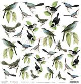 Craft O Clock - 12x12 Mixed Media Ephemera cut out sheet 1 - Birds (CC-MM-DOD-01)