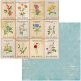 BoBunny - Double-Sided Cardstock 12x12- Botanical Journal - Garden (BBBJ12 11097)