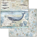 Stamperia - Double-Sided Cardstock 12x12 - Arctic Antarctic - Whale (SBB729)