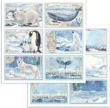 Stamperia - Double-Sided Cardstock 12x12 - Arctic Antarctic - Cards (SBB732)