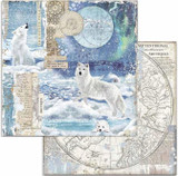 Stamperia - Double-Sided Cardstock 12x12 - Arctic Antarctic - Wolf (SBB733)