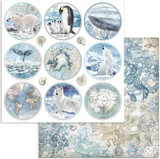 Stamperia - Double-Sided Cardstock 12x12 - Arctic Antarctic - Rounds (SBB734)