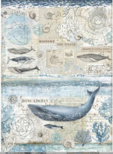 Stamperia - Decoupage Rice Paper A3 11.69x16.53 - Arctic Antarctic- History of the Whale (DFSA3077-1)