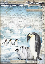 Stamperia - Decoupage Rice Paper A4 8.26x11.69 - Penguins (DFSA4479)