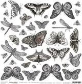 Craft O Clock - 12x12 Mixed Media Ephemera cut out sheet XIII - Butterflies 2 (CC-MM-DOD-13)