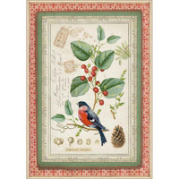 Stamperia - Winter Botanic Little Bird On Holly - Decoupage Rice Paper 8.25 x 11.5 (DFSA4326)