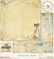 Blue Fern Studios - Memories 12x12 dbl sided paper - Photographic Record