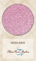 Blue Fern Studios Seedling - Tickled 841880