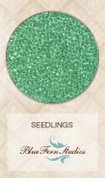 Blue Fern Studios - Seedlings - Wintergreen 836381
