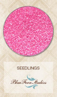 Blue Fern Studios - Seedlings - Pink Topaz (846380)