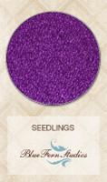 Blue Fern Studios - Seedlings - Purple Crayon
