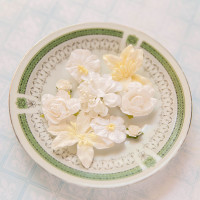 Blue Fern Studios - Radiance Flowers - Floral Basics - White (FLW FBW 688575