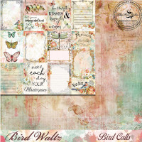 Blue Fern Studios - Bird Waltz - 12x12 dbl sided paper - Bird Calls (690974)