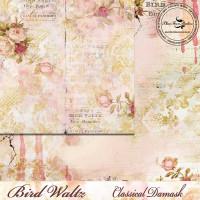 Blue Fern Studios - Bird Waltz - 12x12 dbl sided paper - Classical Damask (685178)