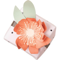 Sizzix - Thinlits Dies By Jennifer Ogborn 8/Pkg - Tulip (664390)
