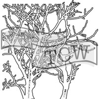 The Crafters Workshop - 6x6 Template Stencil - Mini Branches (TCW 208s)