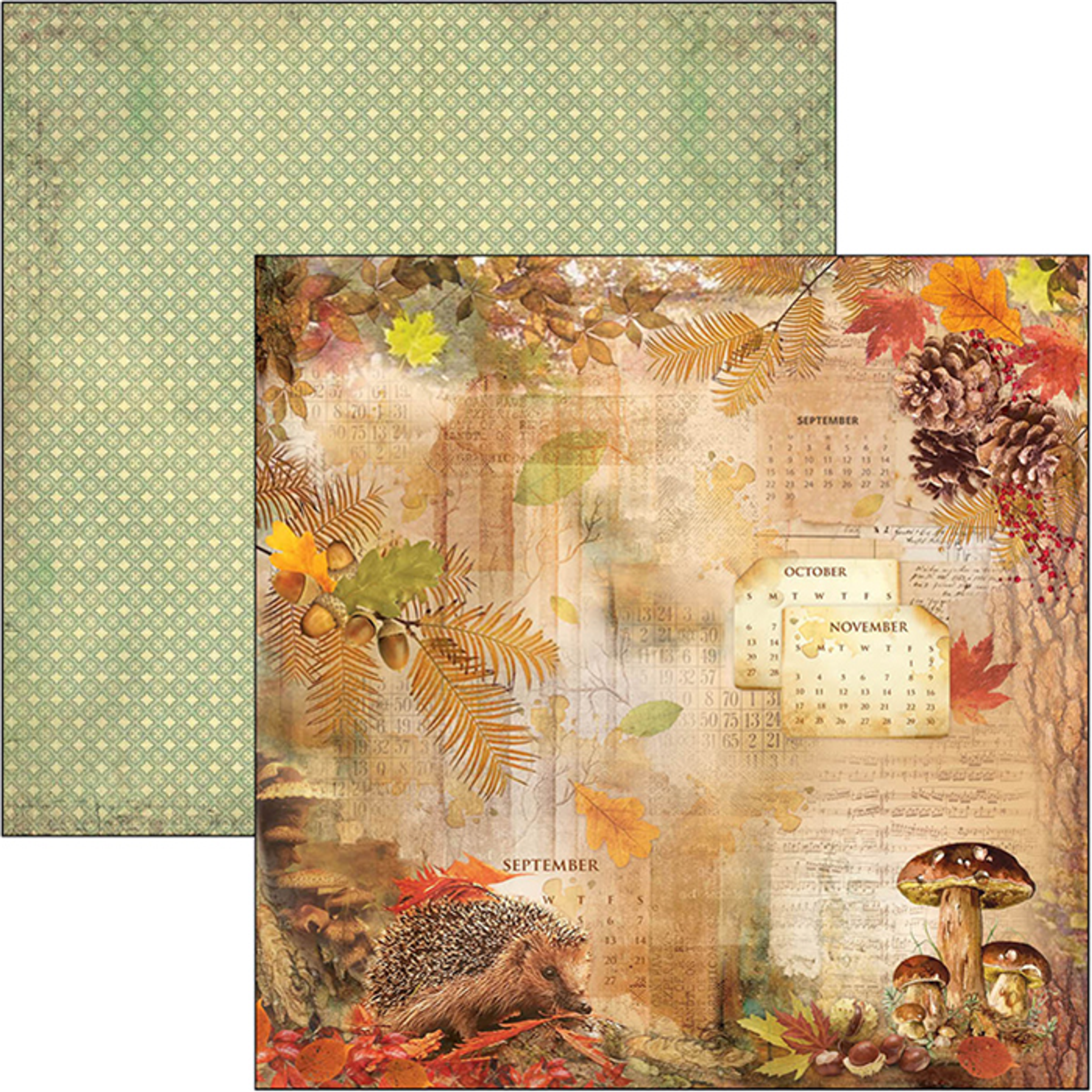 Sound of Autumn 12x12 12 Page Scrapbooking Paper Set by Ciao Bella Fall Floral