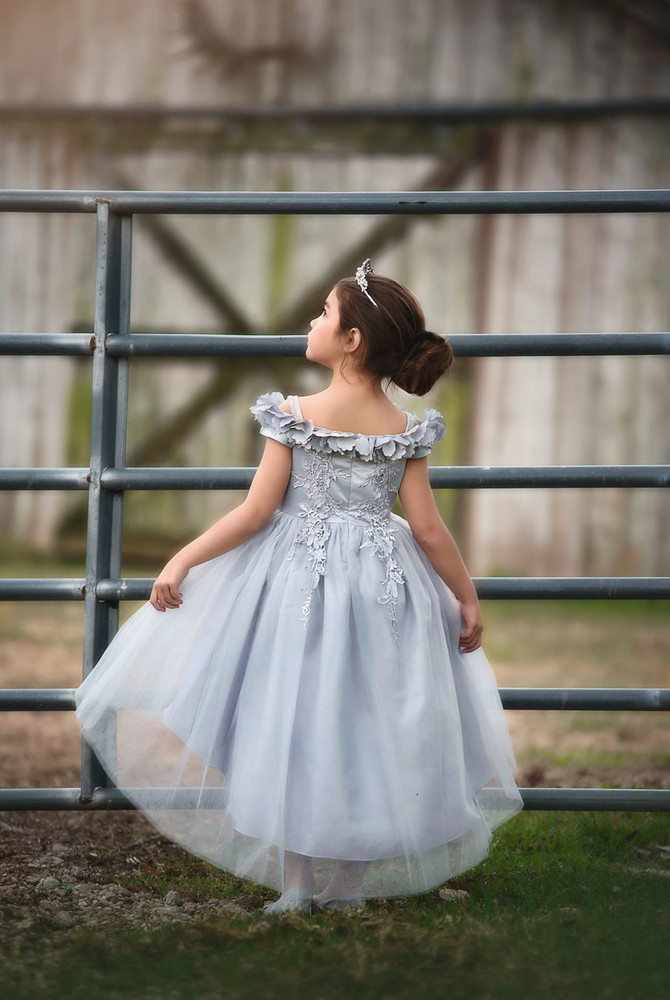 BELLE GOWN SILVER