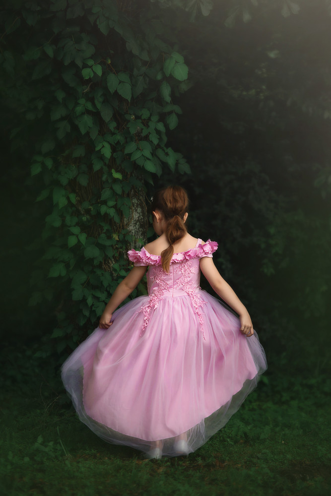 """""""BELLE GOWN CAMELIA"""""""