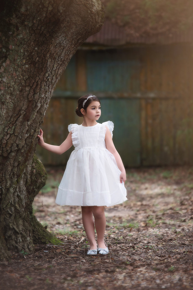 """BUTTERFLY ALICE DRESS WHITE"""