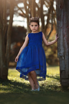 DELPHINE DRESS COBALT BLUE