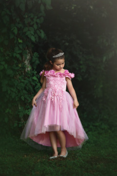 BELLE GOWN CAMELIA