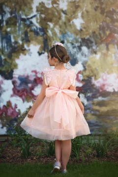 BUTTERFLY ALICE DRESS PINK