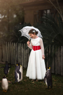 JOLLY HOLIDAY GOWN