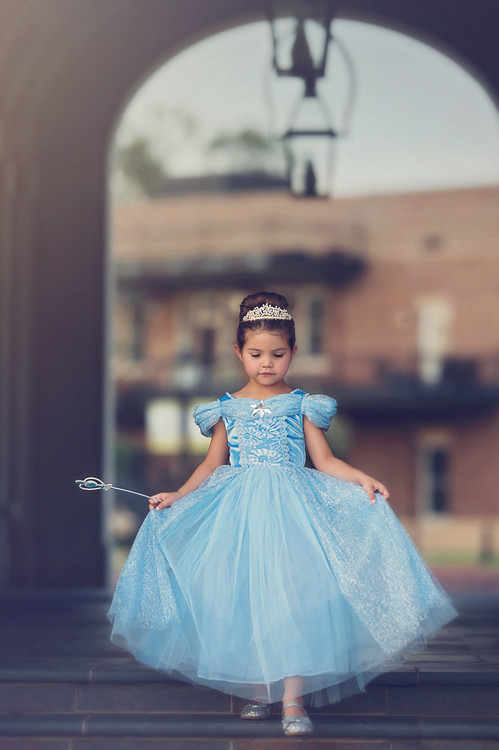 QUEEN OF THE KINGDOM PRINCESS DRESS COSTUME