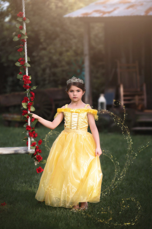 Toddler Princess Costumes