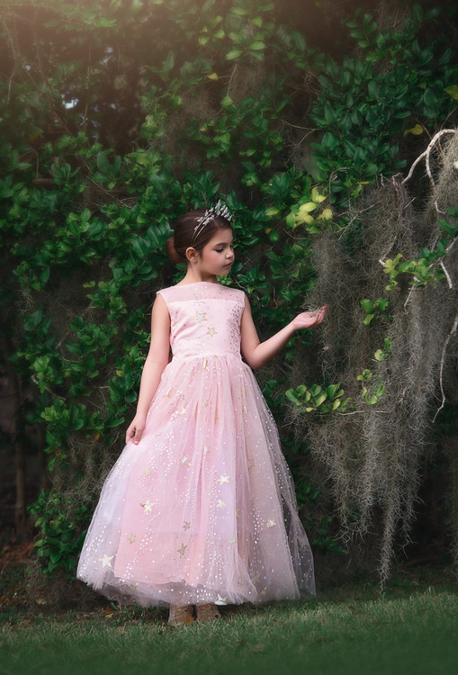 ANTOINETTE GOWN PINK