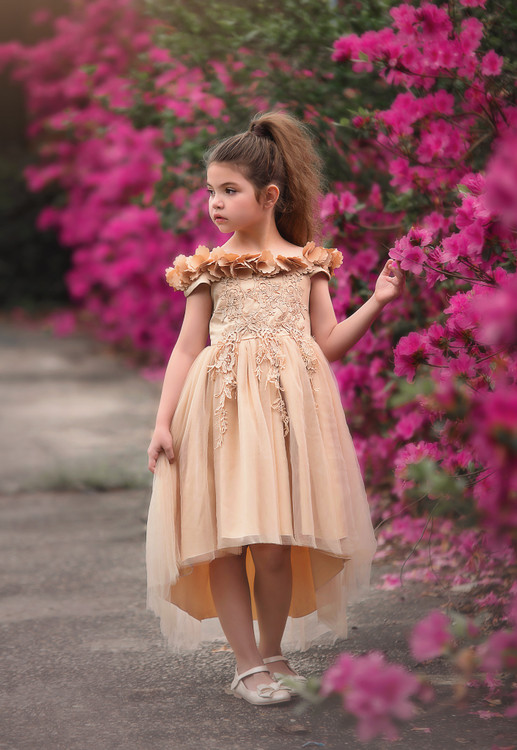 BELLE GOWN GOLD