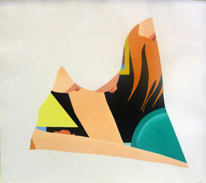 BEDROOM DROP OUT BY TOM WESSELMANN