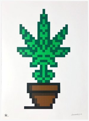 HOLLYWEED (BROWN POT) BY INVADER