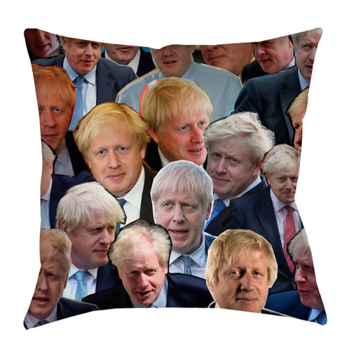 Boris Johnson pillowcase