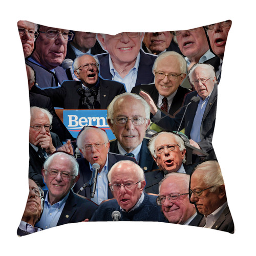 Bernie Sanders pillowcase