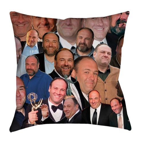 James Gandolfini pillowcase
