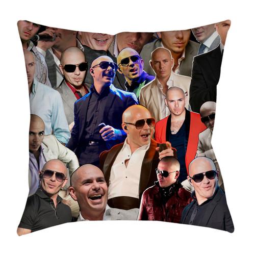 Pitbull pillowcase