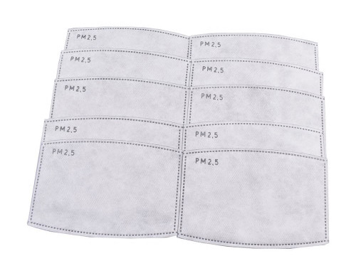 PM 2.5 Activated Carbon Replacement Filters 10-pack
